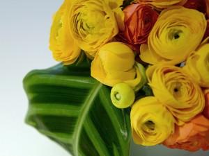 20 web versteel floral 03 DSC 3588